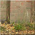 SK7250 : Bench mark, Morton Grange by Alan Murray-Rust