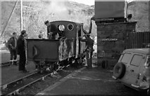 SH6541 : 'Prince' is watered at Tan y Bwlch (2) by Martin Tester