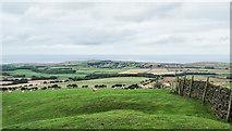 NZ7814 : Descending towards Newton Bank by Trevor Littlewood