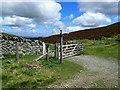 SJ1464 : Offa's Dyke Path signpost by Eirian Evans