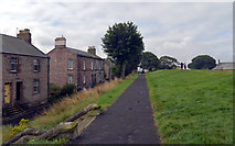 NT9953 : Path on top of the town walls, Berwick by habiloid