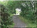 NZ2472 : Path, Weetslade Country Park by Geoff Holland