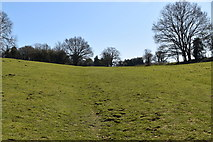 TQ5540 : Tunbridge Wells Circular Walk by N Chadwick