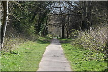 TQ5639 : Tunbridge Wells Circular Walk link path, Rusthall Common by N Chadwick