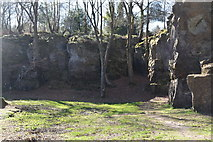 TQ5639 : Quarry, Rusthall Common by N Chadwick