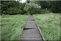 NX4355 : Boardwalk from the Martyr's Stake, Wigtown by Billy McCrorie