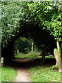SO8351 : A public footpath in the graveyard at Powick by Chris Allen