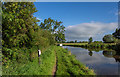 SJ9825 : Mile Marker 40-52, Trent & Mersey Canal by Brian Deegan