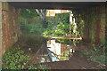 SX9062 : Puddle beneath railway bridge, Livermead by Derek Harper