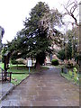SJ3165 : Path through St Deiniol's churchyard, Hawarden by Jaggery