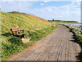 SD1769 : Coast Path near Earnse Scar by David Dixon