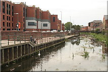 TA2609 : Feeding the water birds on a rather weedy River Freshney, Grimsby by Chris