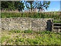 NY6963 : Roadside Wall near East Lodge by Adrian Taylor