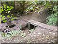 SE1228 : Annet Hole Well and footbridge, Shelf by Humphrey Bolton