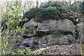 TQ5538 : High Rocks by N Chadwick