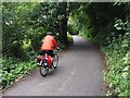 SJ8690 : Cyclist on the Trans Pennine Trail by Graham Hogg