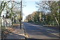 TQ1174 : Staines Rd, A315 by N Chadwick