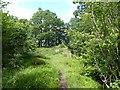 NY7960 : Footpath near Staward Peel by Adrian Taylor