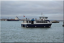 SZ6299 : Ali Cat, Portsmouth Harbour by N Chadwick
