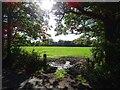 SO7243 : Field gateway by Philip Halling