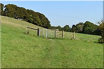 SU1126 : Kissing gate on path across Homington Down by David Martin