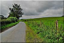 H5672 : Dark skies, Mullaslin by Kenneth  Allen