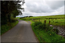 H5672 : Bends along Shinnagh Road by Kenneth  Allen