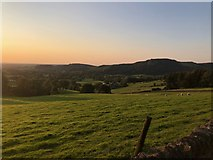 SJ9570 : View Northwest from lane above Lees Farm by Philip Cornwall