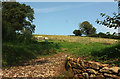 SX6960 : Farmland, Aish by Derek Harper