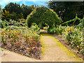 SJ7387 : Dunham Massey Rose Garden by David Dixon