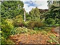 SJ7387 : Dunham Massey Garden by David Dixon