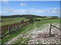 SY6287 : South Dorset Ridgeway near Dorchester by Malc McDonald
