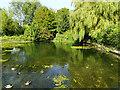 SP1401 : Millpond, Fairford by Brian Robert Marshall