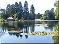 ST2885 : The lake at Tredegar House Country Park, Newport by Robin Drayton