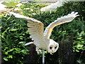 TQ0658 : Wisley - Owl in Flight by Colin Smith
