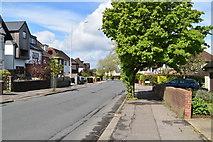 TQ5841 : Yew Tree Road by N Chadwick