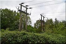 TQ5942 : Two pylons by N Chadwick