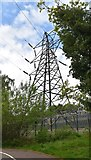 TQ5940 : Pylon by sub-station by N Chadwick