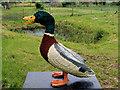 SD4314 : Lego™ Sculpture Trail at Martin Mere - Mac the Mallard by David Dixon