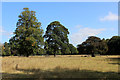 SE5367 : Parkland in front of The Hawkhills by Chris Heaton