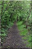 TQ5844 : Footpath by A21 by N Chadwick
