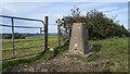 J2056 : Fort Hill Triangulation Pillar by Rossographer