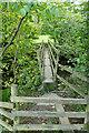 SD7386 : Footbridge at Lenny's Leap by Andy Waddington