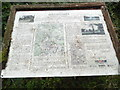 SU9295 : Information Board at Gatestakes Pond and Common (2) by David Hillas