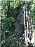 NS2301 : Lime Kilns by Anne Burgess