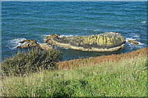 NX0987 : Offshore Rock by Anne Burgess