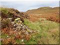 NM4767 : Ruined wall, Druim Liath by Mick Garratt