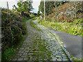 SE0514 : Tyas Lane. Slaithwaite by Humphrey Bolton
