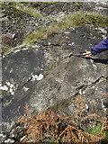 NX1894 : Magmatic Breccia by Anne Burgess
