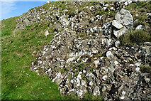 NX1894 : Conglomerate on Byne Hill by Anne Burgess